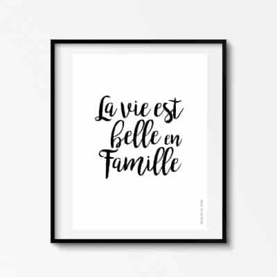 Lámina Famille - Frases